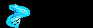 SQL-Datenbank