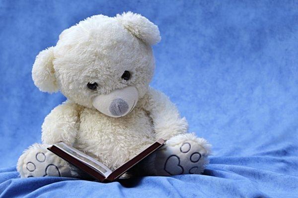 Foto: Teddbybär, der ein Buch liest