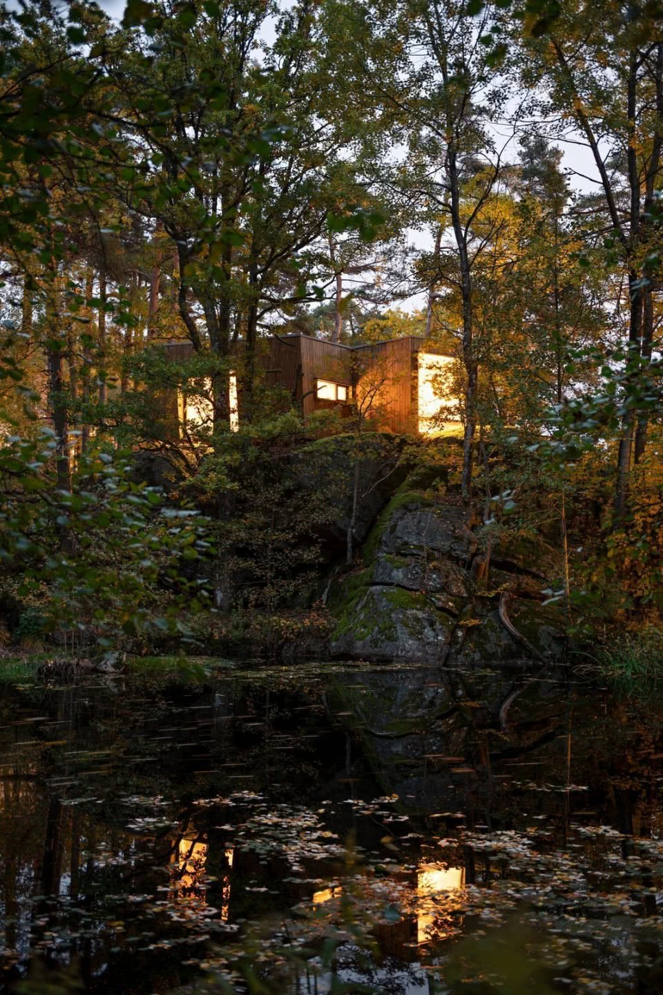 the-cabins-large-windows-allow-an-unparalleled-view-of-the-pond-it-overlooks-while-lush-greenery-seems-to-almost-cover-the-exterior