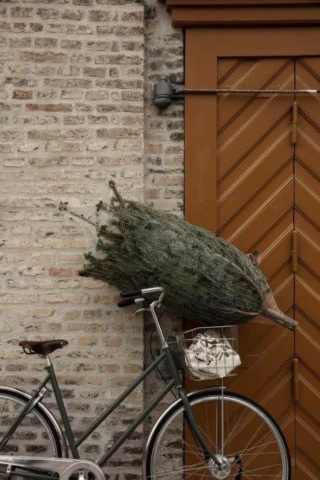 Weihnachstbaumkauf